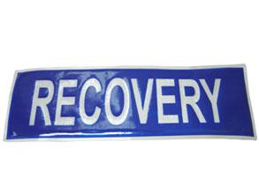 Recovery Badge Large Bee
